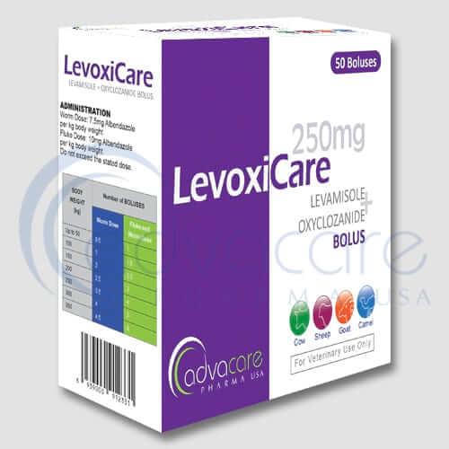 Levamisole + Oxyclozanide Boluses